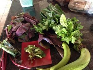 Michael Mafdis' Beautiful Vegetables
